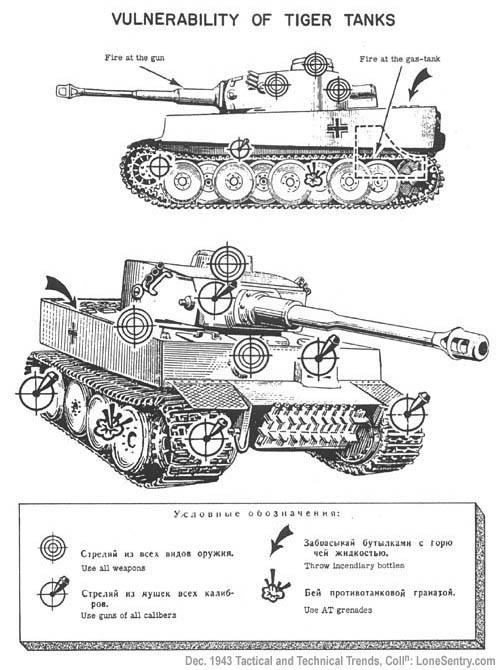 Tiger Tank 5