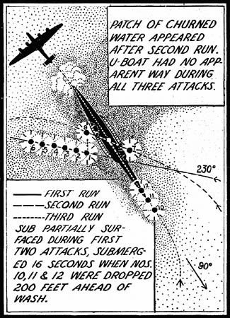 B-24 Liberator Tidewater Tillie Antisubmarine Warfare