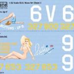 486th BS 340th BG, Bottoms Up, Ruthie - B-25J Nose Art
