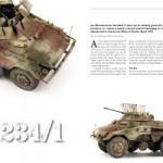 Diorama Sdkfz 234 Model