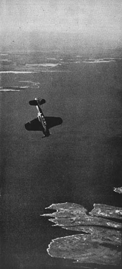 SBD Dauntless Dive Bomber of U.S. Navy in WWII
