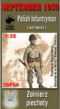 polish-infantryman-35f66
