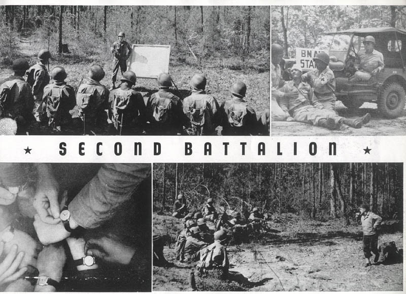Second Battalion, 260th Infantry